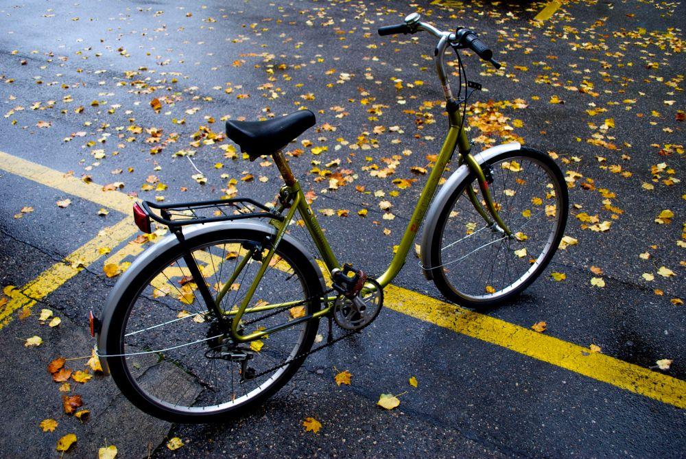 Fall biking bike riding in fall in Geneva1